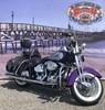 Photo of a 2001 Harley-Davidson® FLSTS/I Heritage Springer®