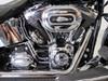 Photo of a 2015 Harley-Davidson® FLSTN Softail® Deluxe