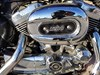 Photo of a 2007 Harley-Davidson® XL1200L Sportster® 1200 Low Patriot Special Edition