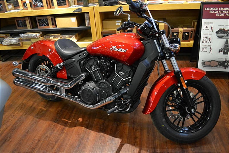 Photo of a 2019 Indian®  Scout® Sixty