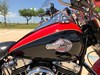 Photo of a 2010 Harley-Davidson®  Custom Trike