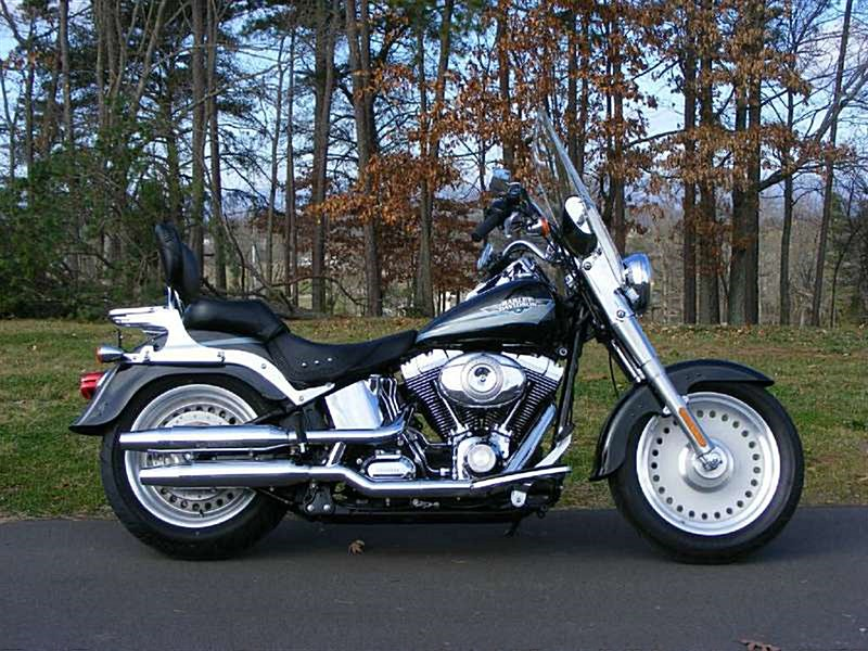Photo of a 2009 Harley-Davidson® FLSTF Softail® Fat Boy®