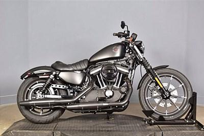 Used 2021 Harley-Davidson® Iron 883™