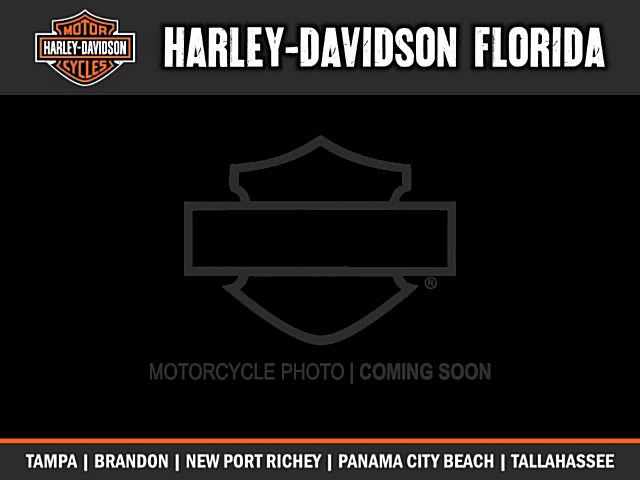 Photo of a 2019 Harley-Davidson® FLHXS Street Glide® Special